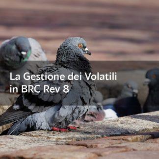 Piccioni_Corso_BRC_8